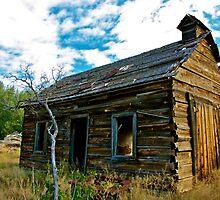 Old Barn by Gina Dazzo