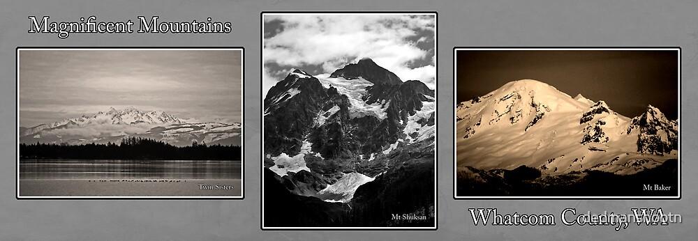 monochrome mountains of whatcom county by dedmanshootn