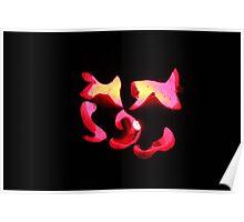 Jack-O-Lantern 1 Poster