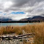 Lake Tekapo, South Island by Kevin Hellon