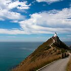 Nugget Point, Otago, South Island, New Zealand by Kevin Hellon
