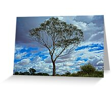 Loney Tree HDR Greeting Card