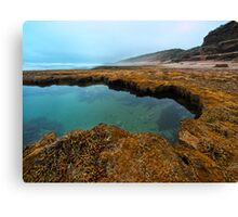 Across the Rockpool Canvas Print