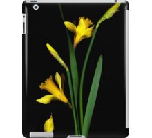 Daffodil / Jonquil ~ Narcissus Falling iPad Case/Skin