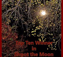 Banner - STM - Top Ten Winner by aprilann