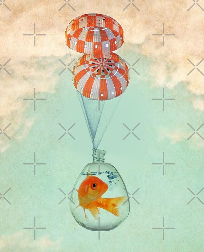 parachute goldfish by Vin  Zzep