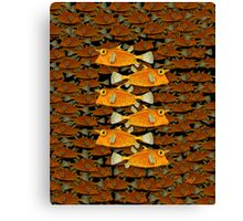 many fish (uni) Canvas Print