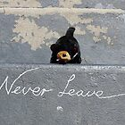Never Leave by StuartAJohn