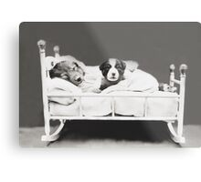 Harry Whittier Frees - The Insomniac Puppy Metal Print