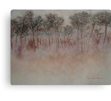 Trees In Early Morning Fog Canvas Print