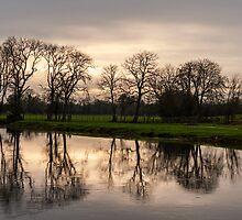 Winter evening reflections, River Barrow, Fenniscourt, County Carlow, Ireland by Andrew Jones
