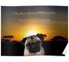 African Sunrise, Pugs Poster