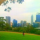 """Kings Park, Perth, Western Australia"" by Ariane"