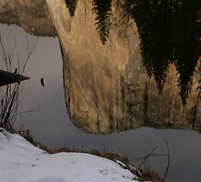 Early Morning El Capitan Reflection by photosbyflood