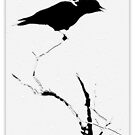 CROW IN SPRING SNOW by Betsy  Seeton