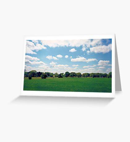 A Beautiful Day in the Neighborhood Greeting Card