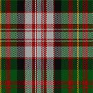 02165 Valley of the Green #2 Fashion Tartan Fabric Print Iphone Case by Detnecs2013