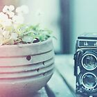 Vintage Camera by Indea Vanmerlin