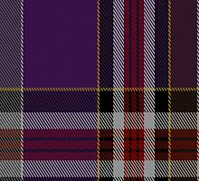 02175 Unknown 19th Century (Bill Johnson) Tartan Fabric Print Iphone Case by Detnecs2013
