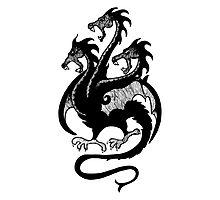Targaryen Sigil - 3 Headed Dragon Photographic Print