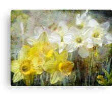 Springtime has come Canvas Print