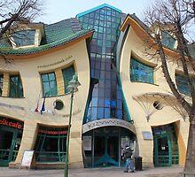 Wibbly Wobbly House by BlackhawkRogue