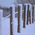 Snowy Fenceline by Kathi Arnell