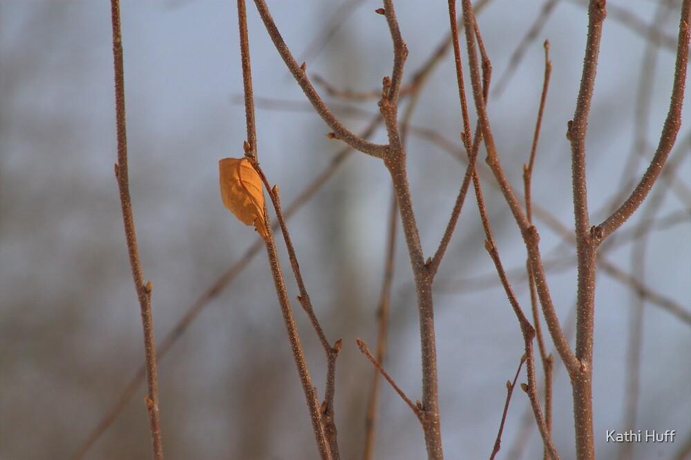Last Leaf by Kathi Huff