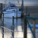 Picasa edited image - boats at Port Sorell  by gaylene