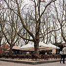 Delft - Beestenmarkt by rsangsterkelly