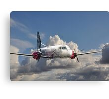 Silver Flying 2 Painted Canvas Print