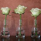 three little roses by Glenda Williams