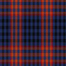 02186 Blueberry Bacon, (Unidentified #8) Tartan Fabric Print Iphone Case by Detnecs2013
