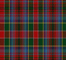 02209 Salsa Silence, (Unidentified #31) Tartan Fabric Print Iphone Case by Detnecs2013