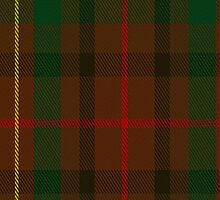 02218 Rusty Gold, (Unidentified #40) Tartan Fabric Print Iphone Case by Detnecs2013