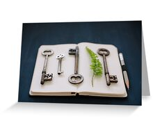 keys Greeting Card
