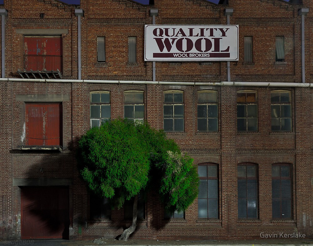 Quality Wool by sedge808