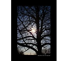 Tree With Rays Of Sunlight - Water Mill, New York  Photographic Print