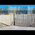 Wooden Sand Fences - Hampton Bays, New York by  Sophie Smith