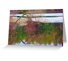 Reflection of a Tree Greeting Card