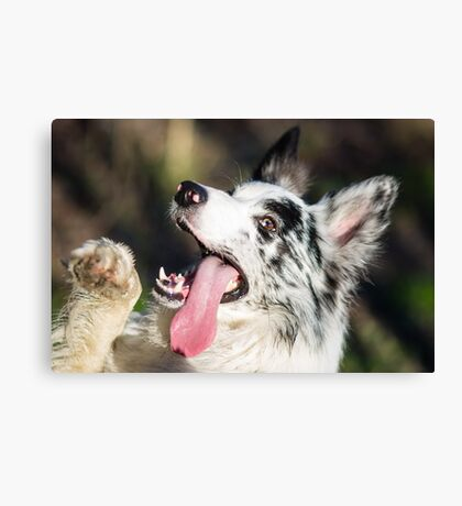 Hellow Canvas Print