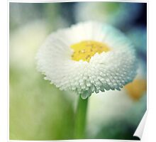 Daisy Dreams Poster