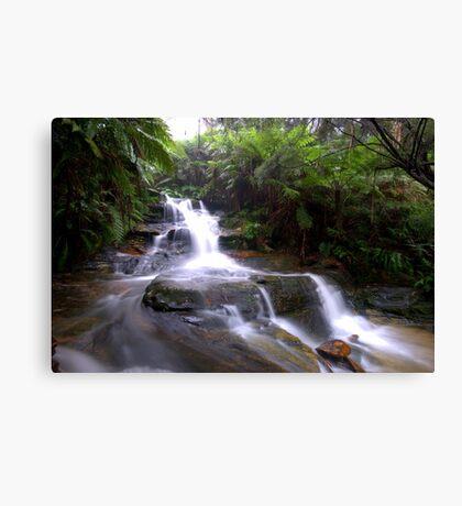 Leura Falls Canvas Print