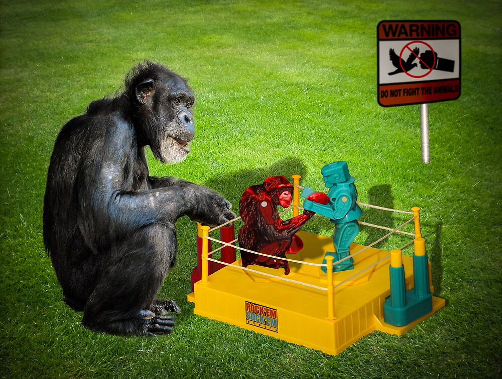 The Chimp Champ by Randy Turnbow