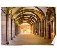 A woman with her dog in the archways of Bruges Poster