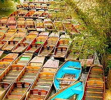 Boats in Oxford by Elana Bailey
