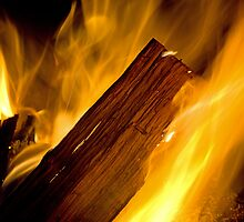 The Campfire by William C. Gladish