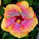Colorful Hibiscus Banner by Amy Herrfurth