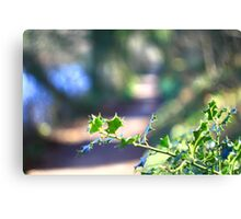 Dream Path  Canvas Print