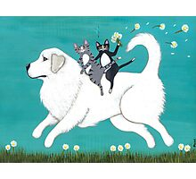 Great Pyrenees and Cats Photographic Print